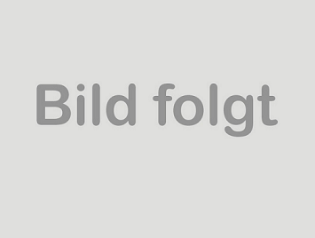 Original Satz Audi A8 4H SQ5 Bremsscheiben vorne OE-Nr. 4H0615301AN 1LV,1ZK,1LP