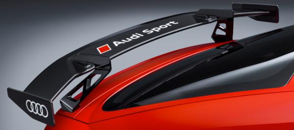 Audi Sport TT,TTS,TTRS Performance Set Heckflügel festst. Carbon schwarz glänzend incl.Füße re/li