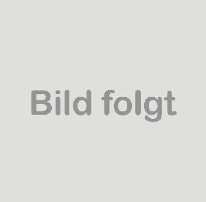 Audi R8 V10 Luftfilter Set Original Luftfiltereinsatz Service Filter 420133844D