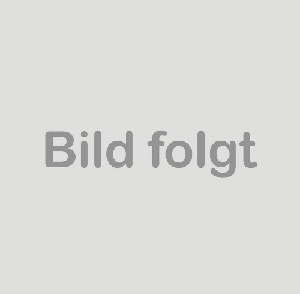 Original VW Audi Kraftstoffpumpe Dieselpumpe 2.0 TDI Förderpumpe 03G145209D